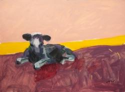 Purple Cow Laying